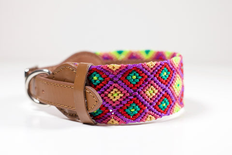 Colourful dog collar - Medium pb6