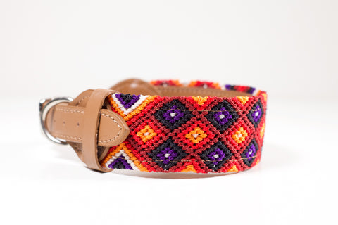Colourful dog collar - Medium rb9