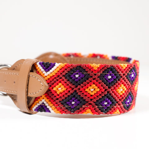 THE DOG COLLARS - Medium