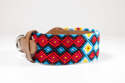 Colourful dog collar - Medium rwb5
