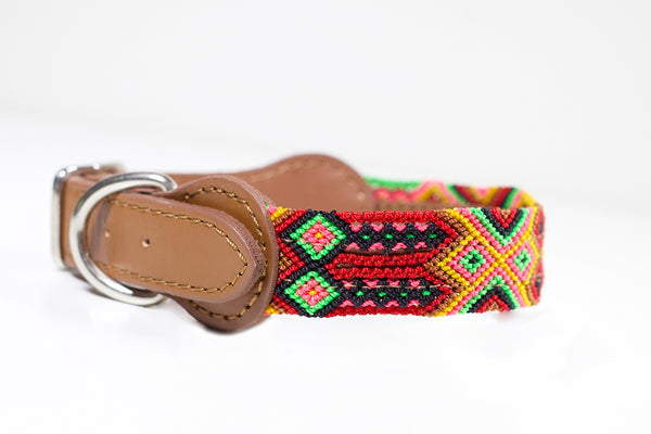 Colourful dog collar - Small mcb9