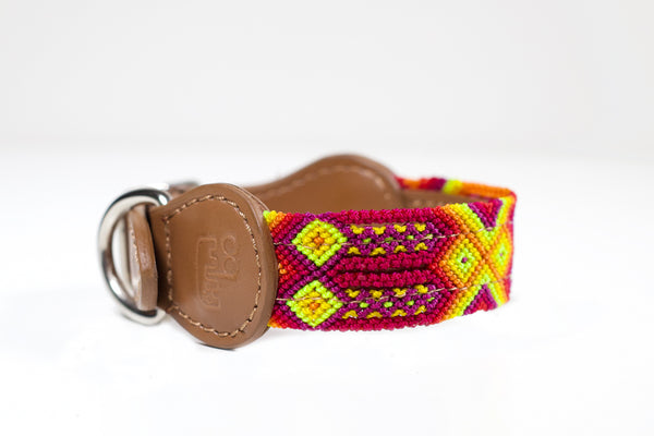Colourful dog collar - Xsmall rb1