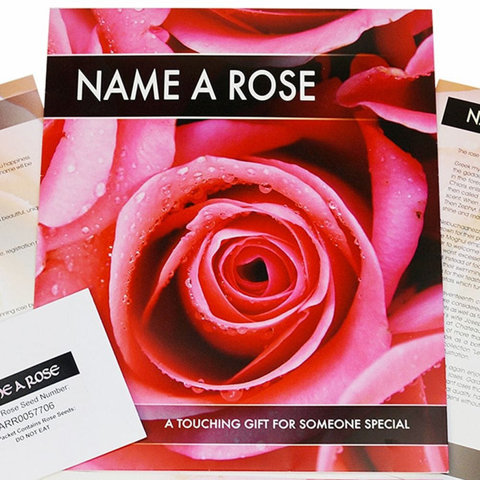 Personalised Name a Rose Bush Gift