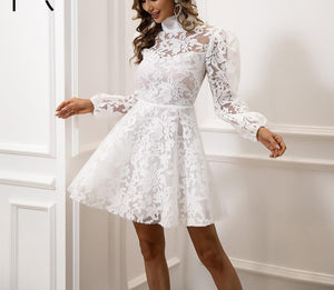 Long Sleeve High Neck Lace Dress