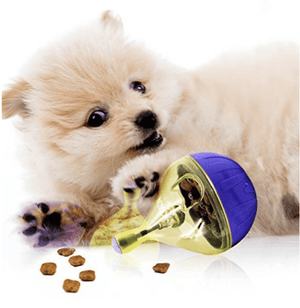 Interactive Pet Food Dispenser