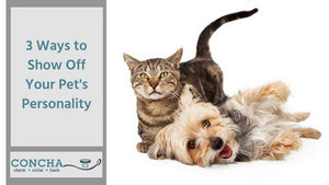 3 Ways to Show Off Your Pet's Personality