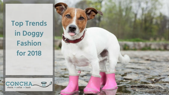 Top Trends in Doggy Fashion for 2018