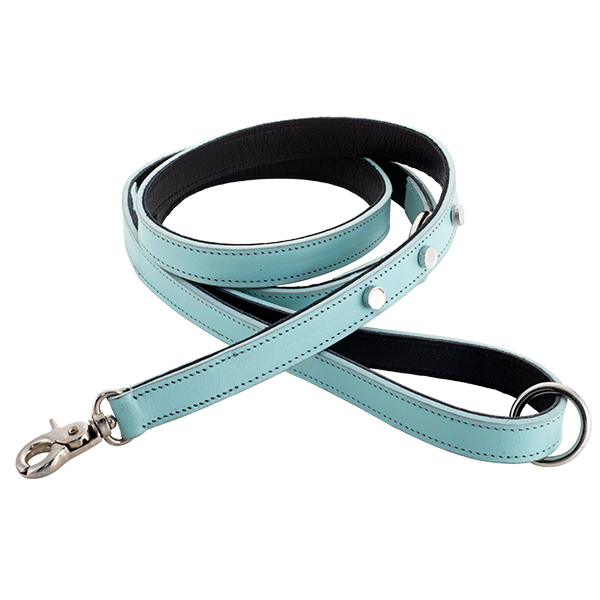 Genuine Leather Leashes