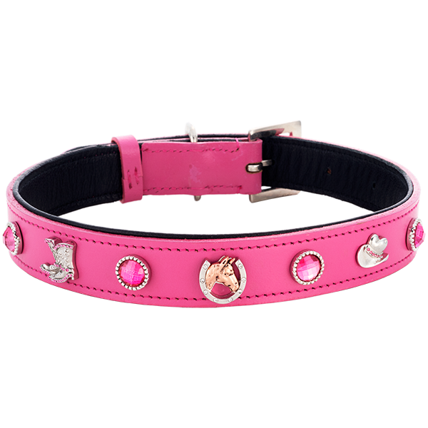 Cowgirl Collar