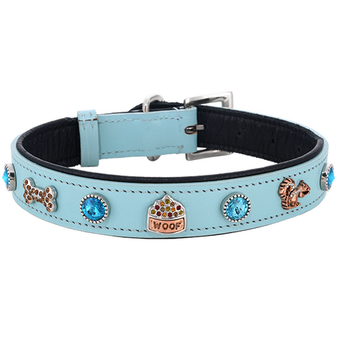 Dog's Favorite Things Collar