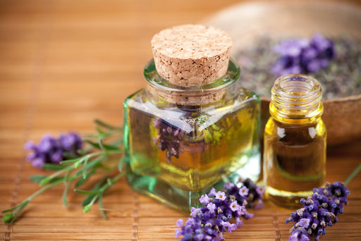 French Lavender Imported Oil