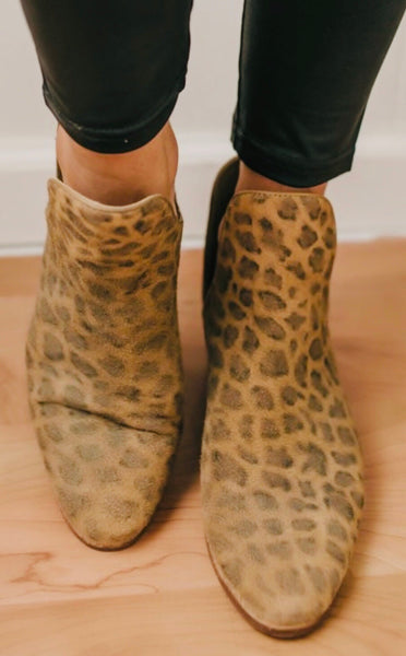 Matisse Coconuts Leopard Cut Out Bootie