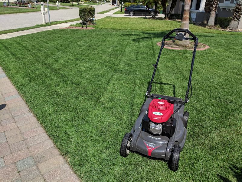 How Much Nitrogen To Put On Your Lawn This Summer