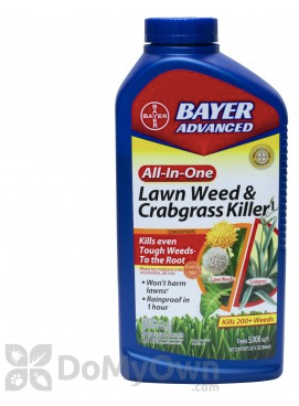 Summer Lawn FAQs - What you can and can't do with your weed control during the summer