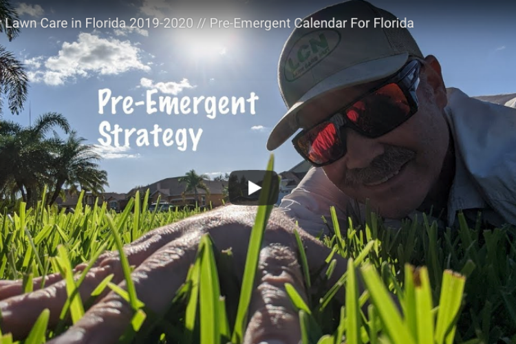 Florida, Texas, Gulf Coast Fall and Winter Pre-Emergent Schedule