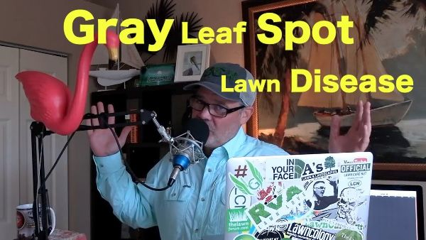 How To Prep Your Lawn for Vacation & Fixing Gray Leaf Spot Disease