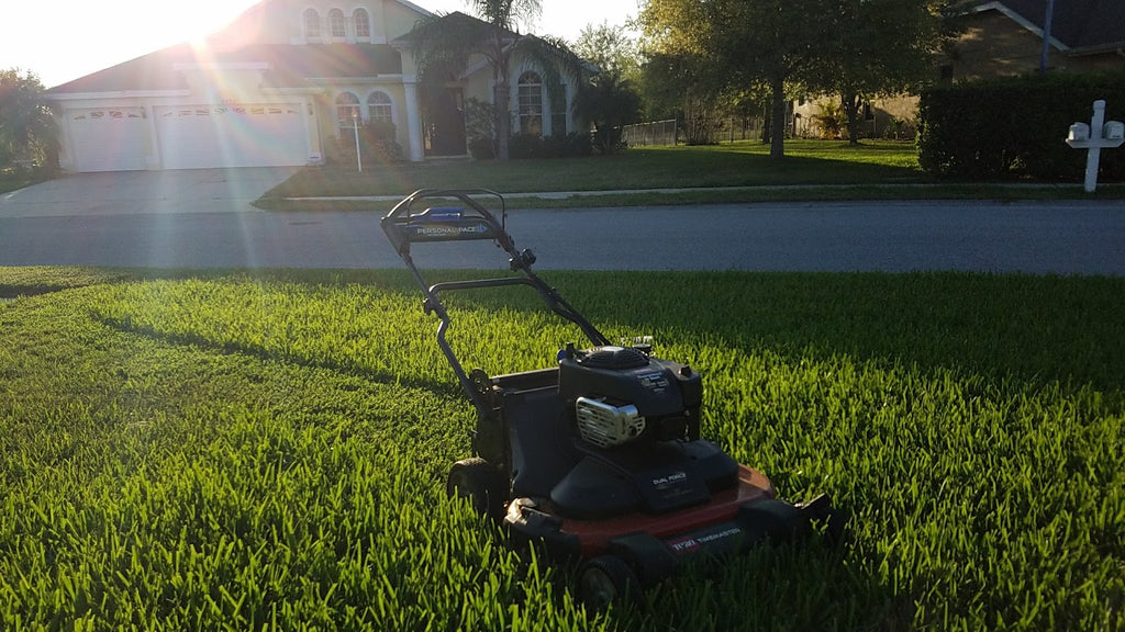 Spring prep, warm season, cool season and transition zone lawns