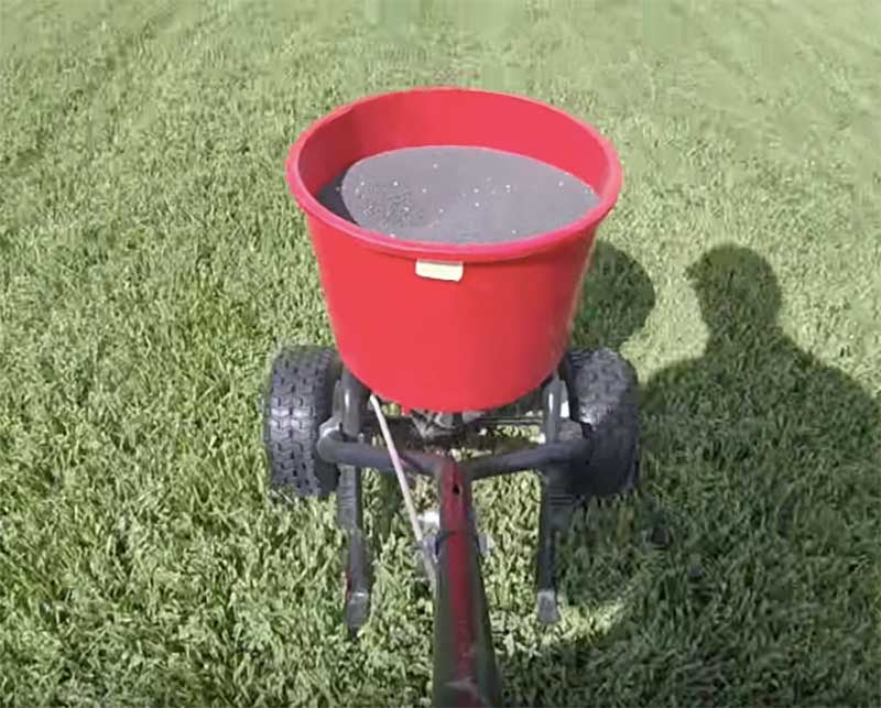 The Ins and Outs of Lawn Fertilizers