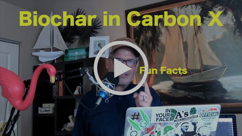 biochar in carbonx