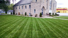 [Cool Season Turf] - Hybrid Organic Lawn Program