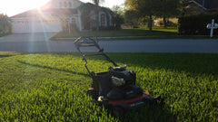 [Cool & Warm Season Turf] - Hybrid Organic Lawn Programs