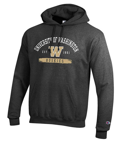 University of Washington Pullover Hoodie, Grey