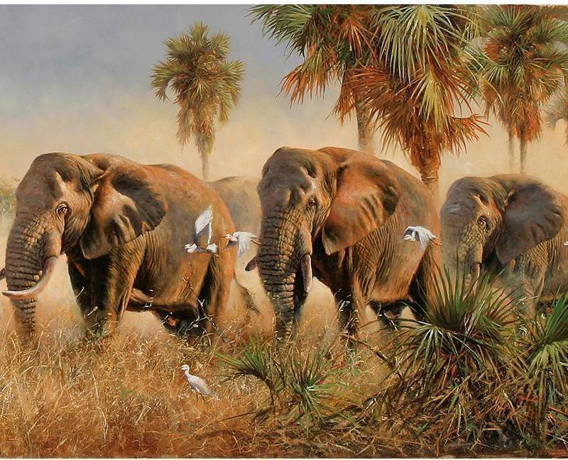 Elephants Art DIY Painting By Numbers