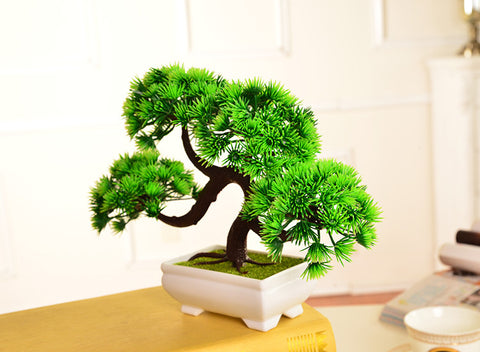 Puffy Emulate Bonsai Tree + Vase