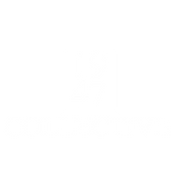 1947 Collective