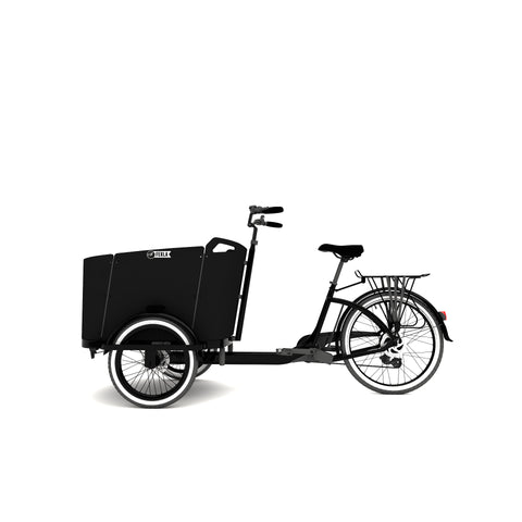 The Family Cargo Bike- Carrying Kid's Bike