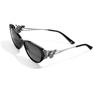 Brighton Butterfly Sunglasses