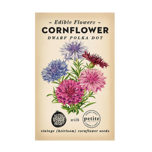 CORNFLOWER HEIRLOOM SEEDS