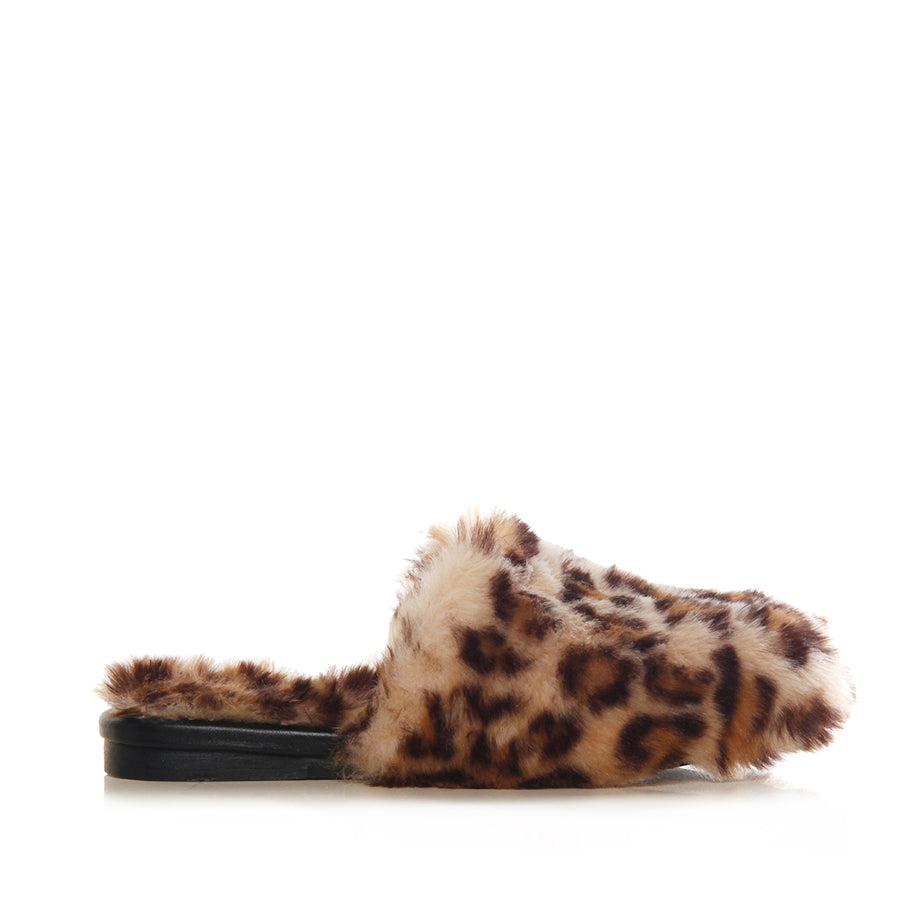 Slipper Leopad