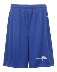 "Youth 6"" Shorts / Royal / Broad Bay Swim - Fidgety"