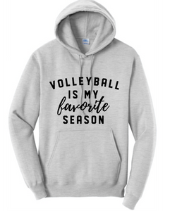 Favorite Volleyball Fleece Hoody / Ash / Fidgety