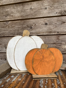 Mini Pumpkin Set