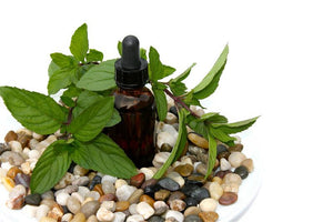 Organic Peppermint Oil Essential Oil (Food Grade)