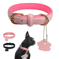 Padded Leather Collars in Pink or Black