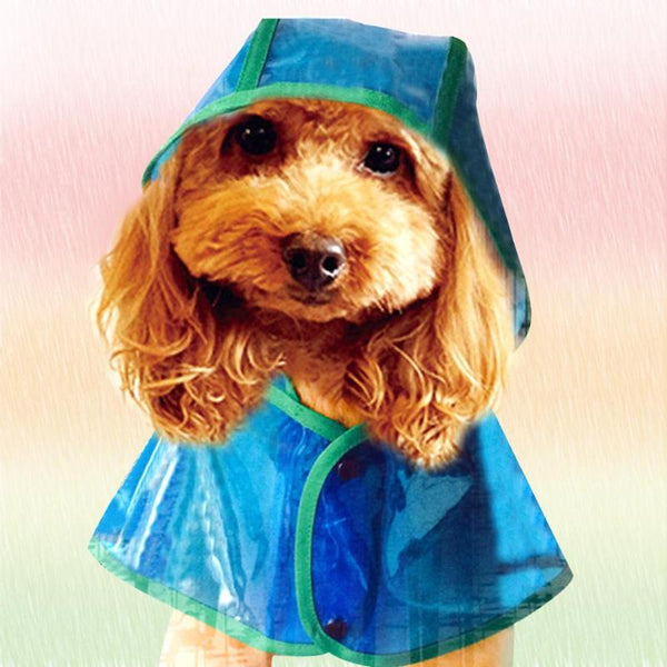 Waterproof Hooded Fashionable Pet Raincoat in 3 Transparent Colors