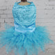 Beautiful Sequined Tutu Pet Dress in White or Blue