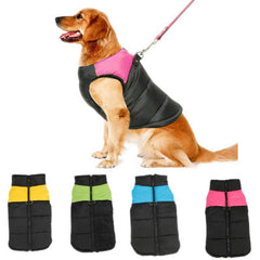 Warm Thick Winter Pet Jackets in 4 Bright Colors – 10 Size Range