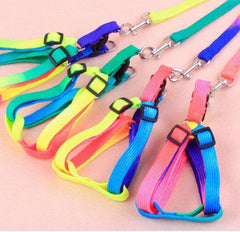 Colorful Adjustable Small Pet Harness & Leash - One Size