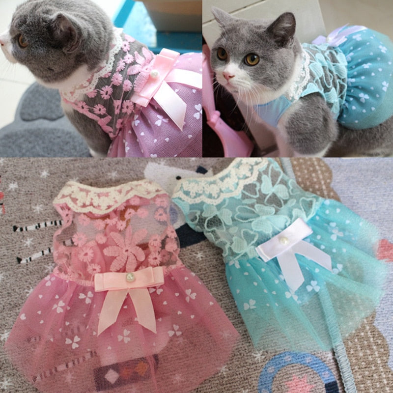 Cute Lace Dress for Cats & Dogs