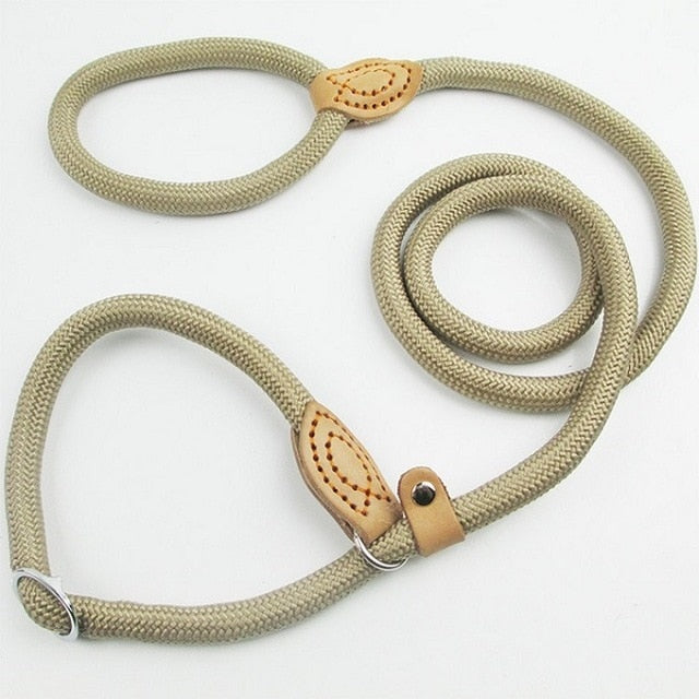 Chain Leash Slip Collar