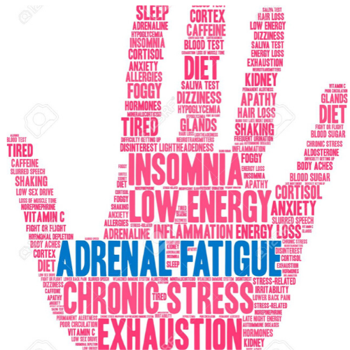 Is Exhaustion Your Constant Companion? It Could Be Your Adrenals