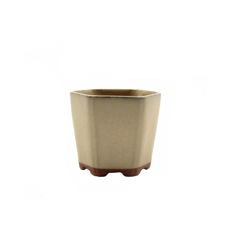 "3"" Yixing Coffee Cream Mame Hexagon Pot"