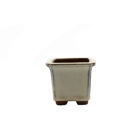 "2.6"" Yixing Cream Coffee Square Mame Pot"