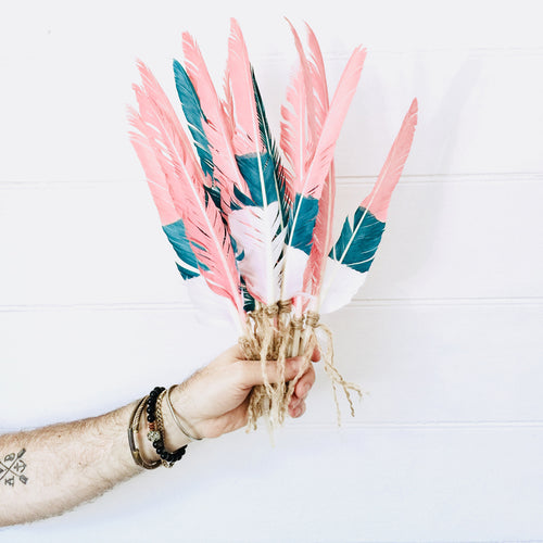Neapolitan Painted Feathers