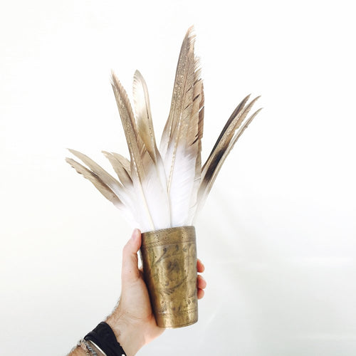 Gold Tipped Feathers 5pk
