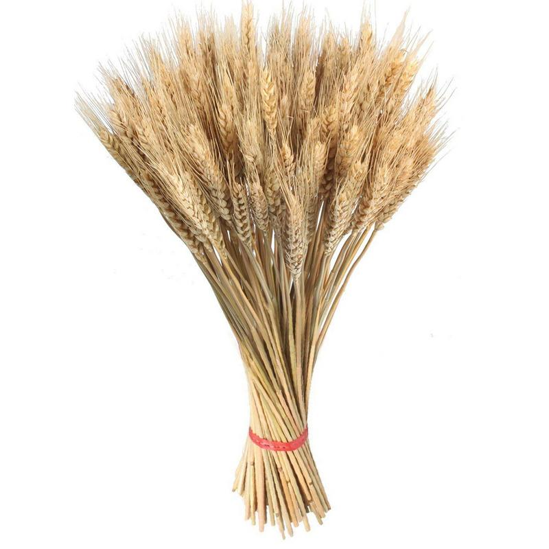 Dried Wheat Bouquet